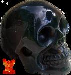Black Skull by PhoenixRisingStock