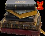 Old Books 2 by PhoenixRisingStock