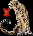 Cheetah by PhoenixRisingStock