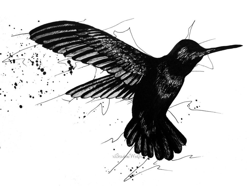 Ink Hummingbird by xiShadowWolfx