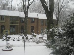 It's a Winter Wonderland...