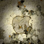 iPad Apple Wallpaper Moss