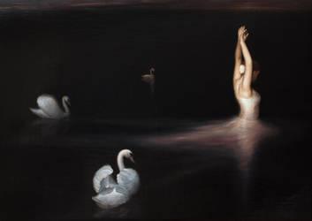 Swan lake by sampoka