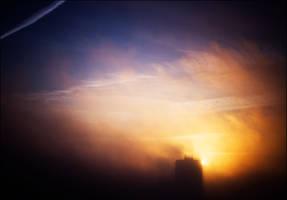 morning noir III