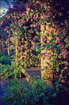 street garden III