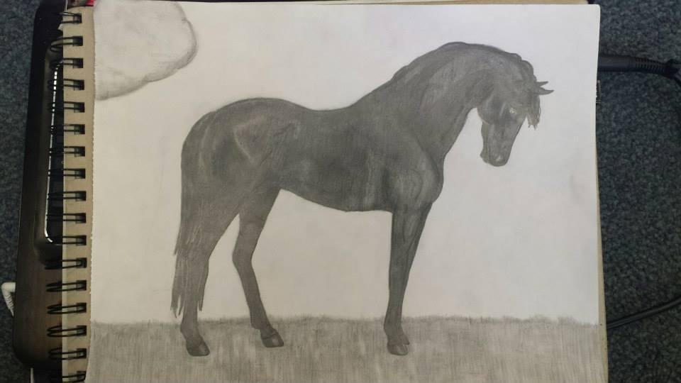 Standing Black horse (Art Gift) by Eyes-Turned-Skyward