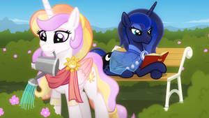 Retired princesses activites