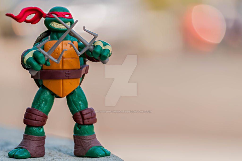 Raphael by NBrownPhotography