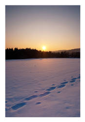 across the snow by Ythor