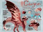 Canyon :COM: