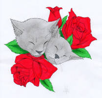 Cats 'n' Roses by TravTheMad