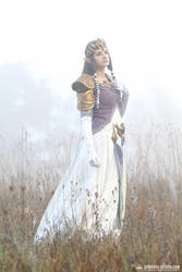 Zelda Twilight Princess #3