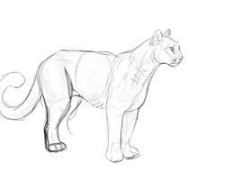 Puma tablet sketch by akeli