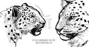 Iseul Practice Sketches by akeli