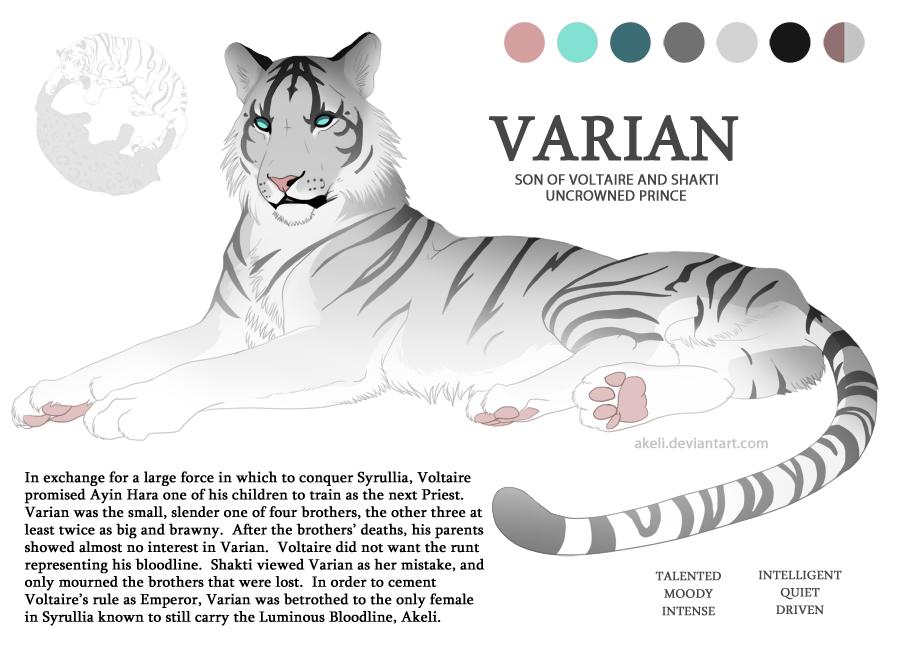 Varien Character Sheet by akeli