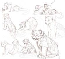 Cub Practice by akeli