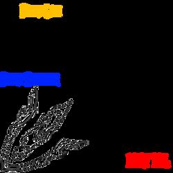 Fairy Tail Symbols