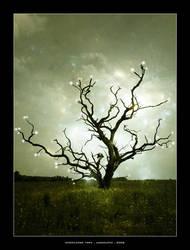 Knowledge Tree by jagscupid