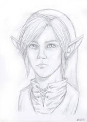 Link Portrait by gehenna-angel