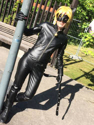Chat Noir Cosplay 1 by gehenna-angel