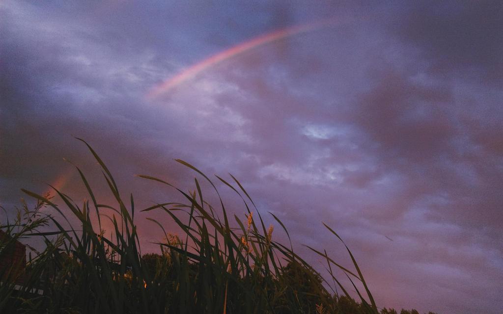 Rainbow road by AshiharaLover