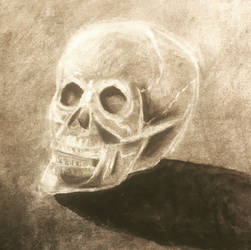 Negative space skull drawing