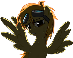Spitfire With Her Hair Down by Shelmo69