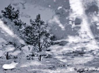 strange winter by maslenkina