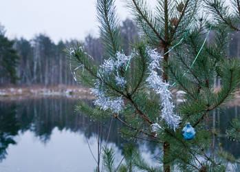 strange winter2 by maslenkina