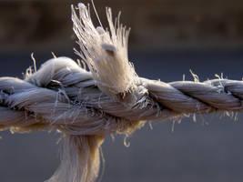 Plastic Rope by brindlegreyhound