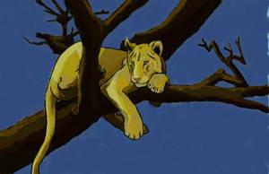 Lion Color Study by brindlegreyhound