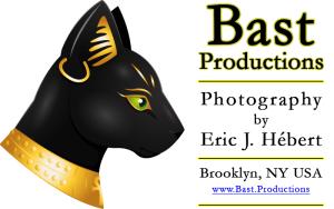 Bast-Productions's Profile Picture