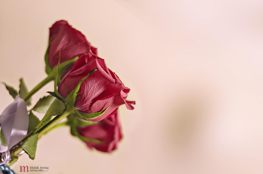 Three by MaryamJassim