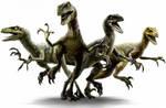 Velociraptors: Blue, Echo, Charlie and Delta by WillDinoMaster55