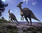 Parasaurolophus by WillDinoMaster55