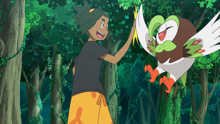 Hau and his Partner, Dartrix by WillDinoMaster55