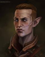 Inquisitor Lavellan by xla-hainex
