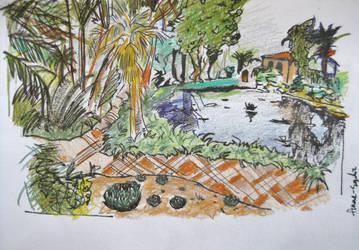Lotusland, California. by dauwdrupje