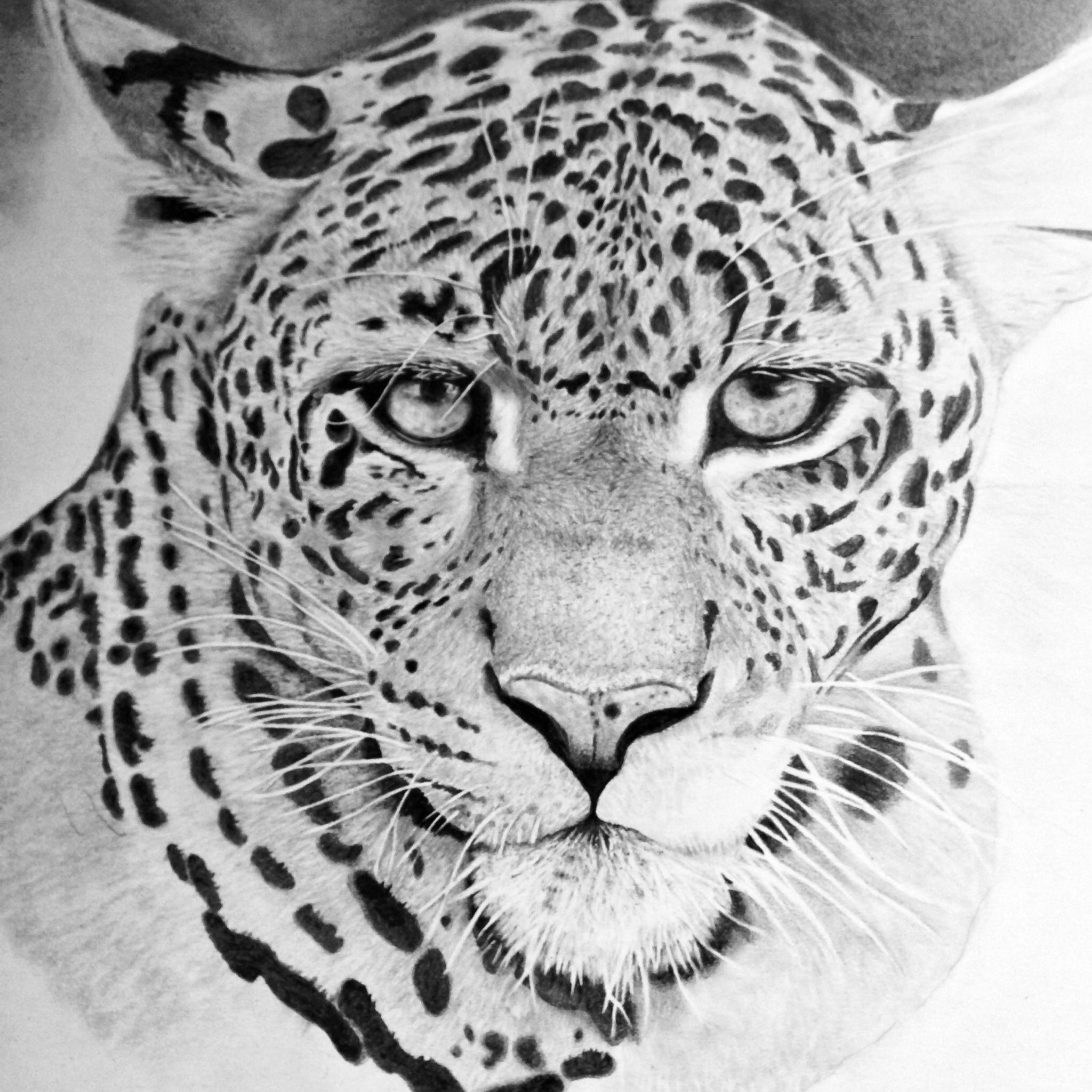 Hyper Realistic Animal Drawing By Gallerydeceylon On