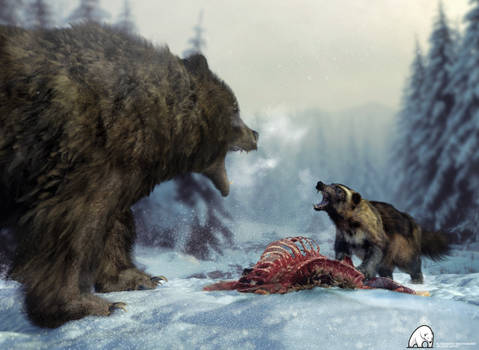 Wolverine Vs. Grizzly
