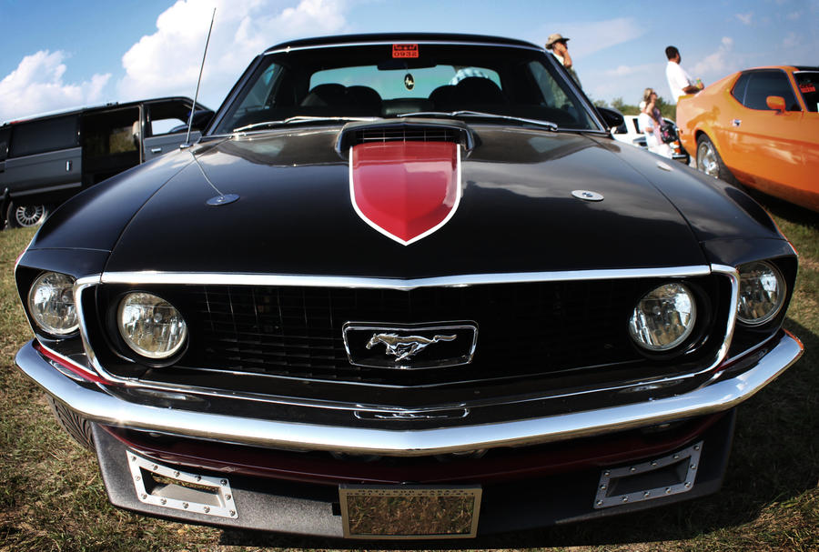mustang_by_cspeter-d4636ag.jpg