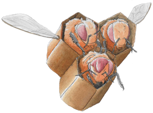 Pokemon Community Collab - Combee (Shiny)
