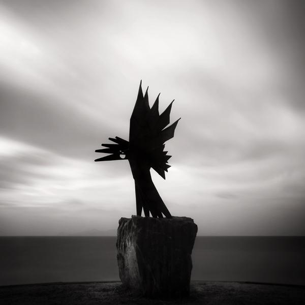Frozen Wings by kpavlis