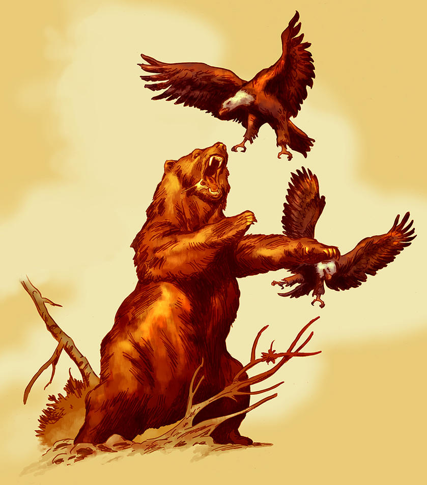 BEAR AND EAGLES - color by  Eagles Drawings Color