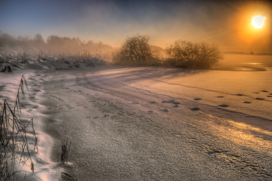 Tracks on Ice by NicoFroehberg