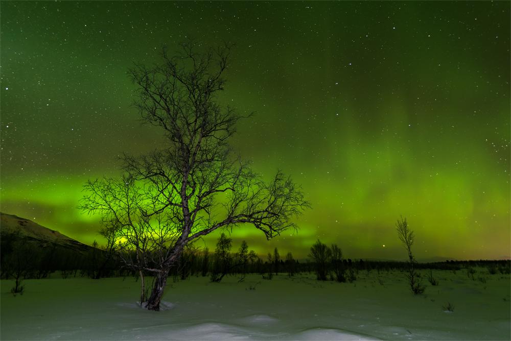 Aurora borealis by NicoFroehberg