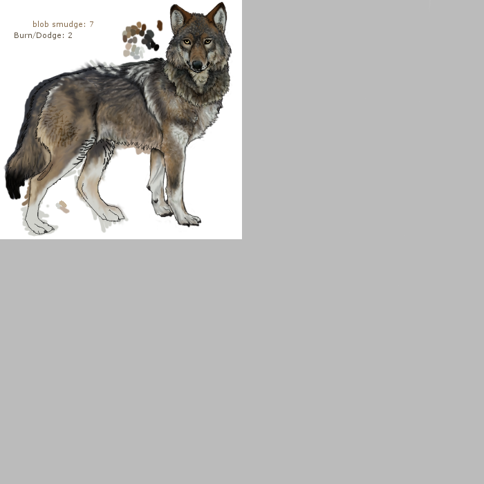 Gray Wolf Skin Preview by RavensMourn