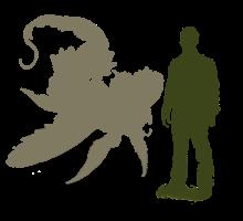 Arowroc Size Comparison by RavensMourn