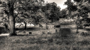 Hilldale Cemetery (Meader)