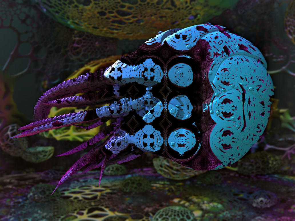 Nautilus by P1x3ltr4sh
